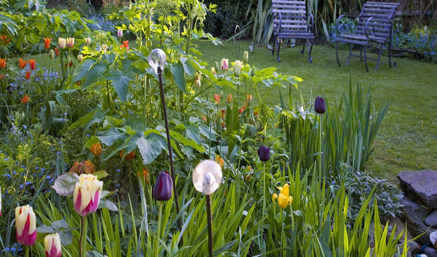 How to Get Rid of Garden Pests with Wildflowers
